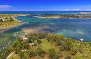 84 Sandfly Ally, Riverside NSW 2444