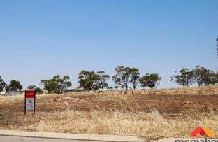 Picture of 7 Jacamar Drive, Northam WA 6401