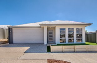 Picture of 2 Ryhill Cres, Wellard WA 6170