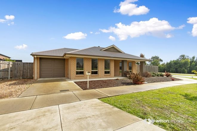 Picture of 21 Jersey Street, TRARALGON VIC 3844