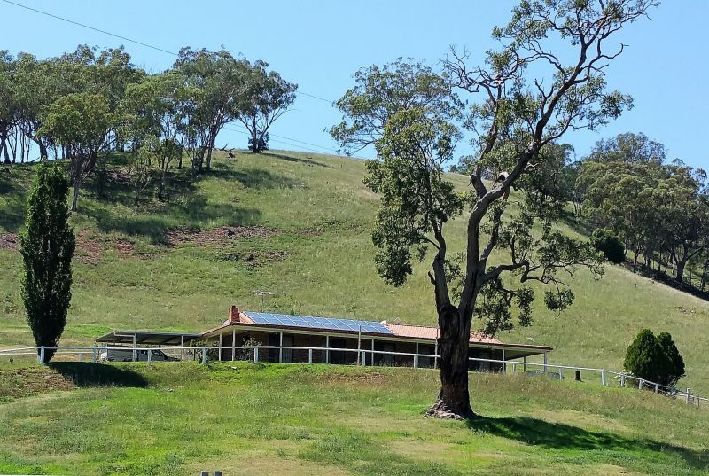 879 Duncans Creek Road, Woolomin NSW 2340, Image 0