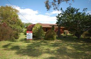 Picture of 13 Kurrajong St, Dorrigo NSW 2453