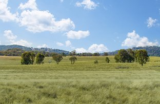Picture of 2826 Kingstown road, Uralla NSW 2358