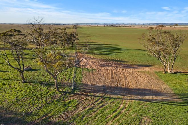 Picture of 1679 Wanappe Road, BOWILLIA SA 5461