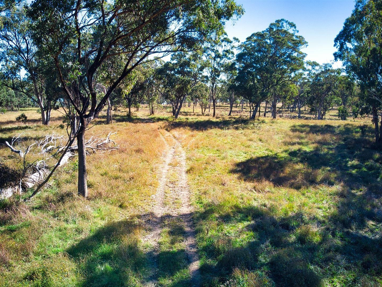 L1- 100 ha/3053 Nullo Mountain Road Nullo Mountain, Rylstone NSW 2849, Image 0