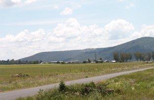 Tenterfield NSW 2372