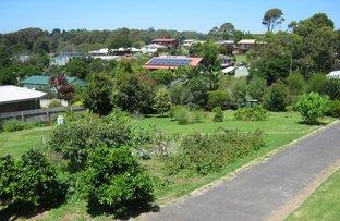 4c Guboo Place, Bermagui NSW 2546