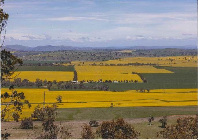 """Little Range"" Cusack Road, Galong NSW 2585, Image 0"