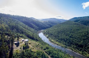 Picture of 1142 Basin Rd, Buchan VIC 3885