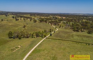 Picture of 6883 Castlereagh Highway, Mudgee NSW 2850