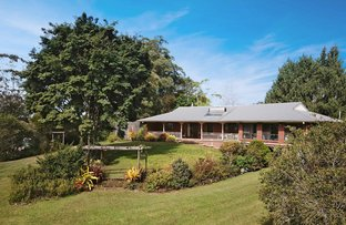 Picture of 1070 Landsborough Maleny Road, Maleny QLD 4552