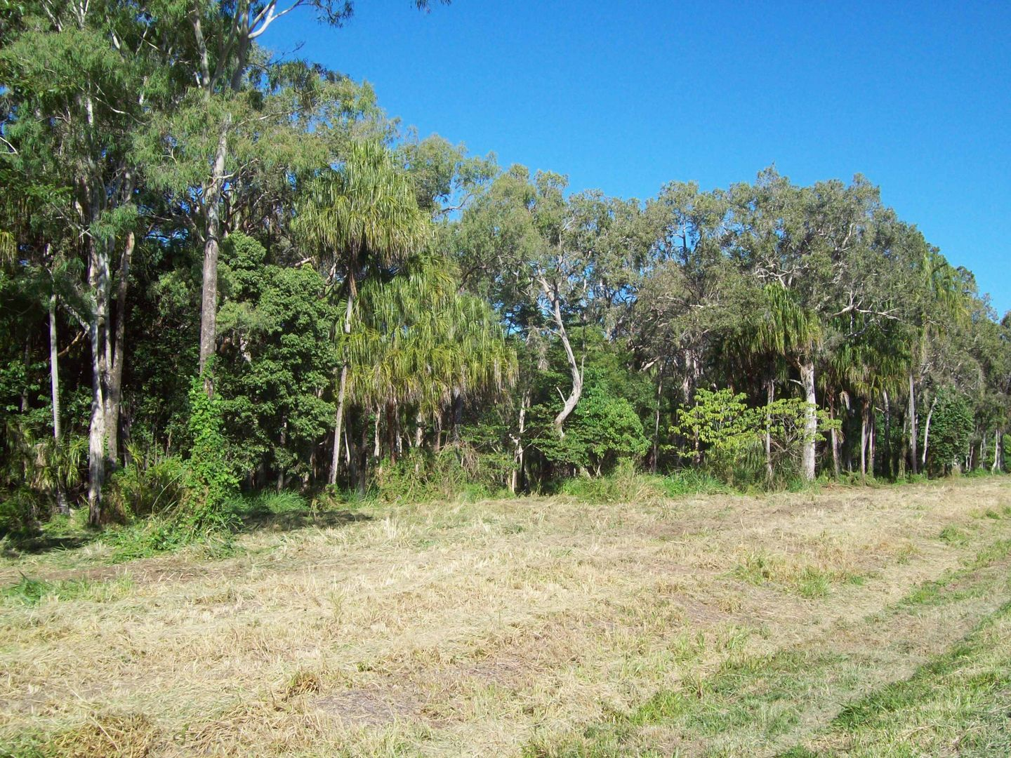 Lot 3 Miran Khan Drive, Freshwater Point QLD 4737, Image 0