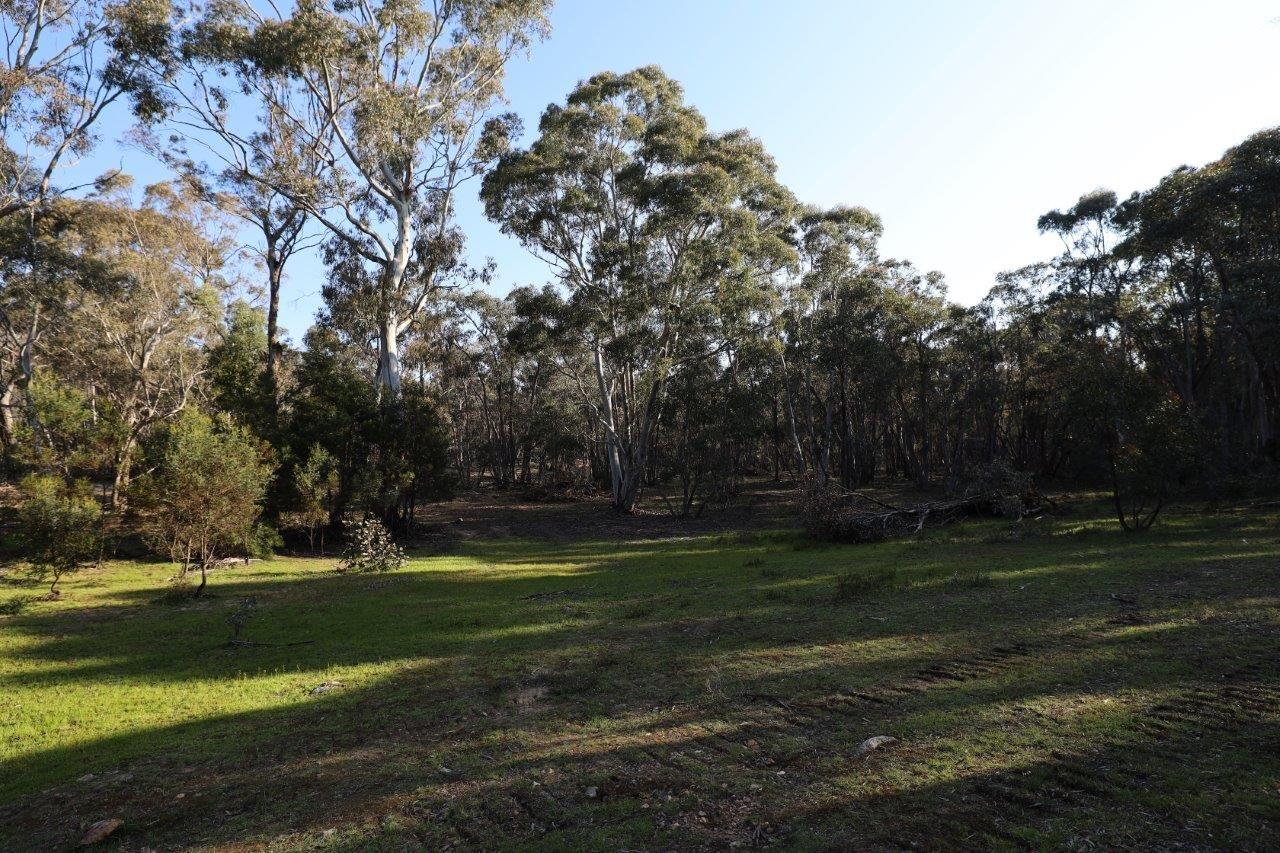 262, 2401 Lumley Rd, Lake Bathurst NSW 2580, Image 0