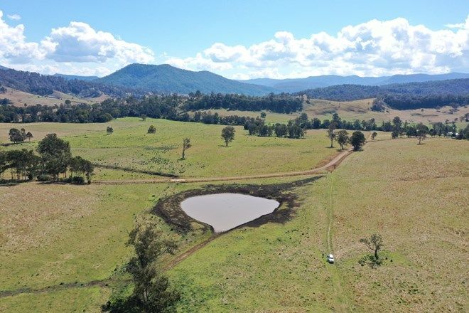 Picture of 141 Green Pigeon Rd, KYOGLE NSW 2474