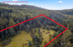 Picture of Lot 0 Braslins Road, Black Hills TAS 7140