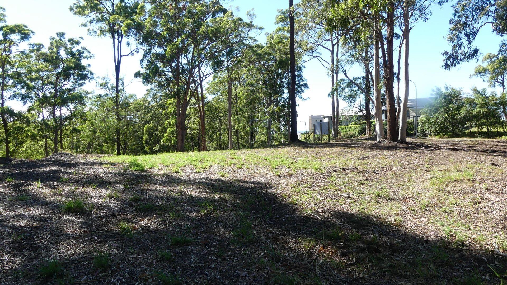 3/131 Tallwoods Drive, Tallwoods Village NSW 2430, Image 1