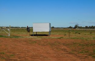 Picture of Section 238 Olive Grove Road, Napperby SA 5540
