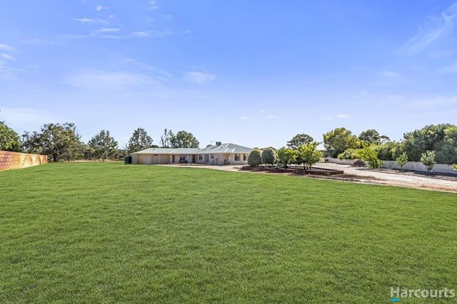 Picture of 7 Bronzewing Grove, MARIGINIUP WA 6078