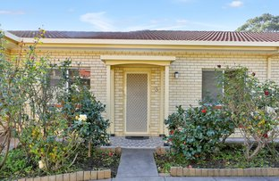Picture of 3/10 Barry Road, Oaklands Park SA 5046