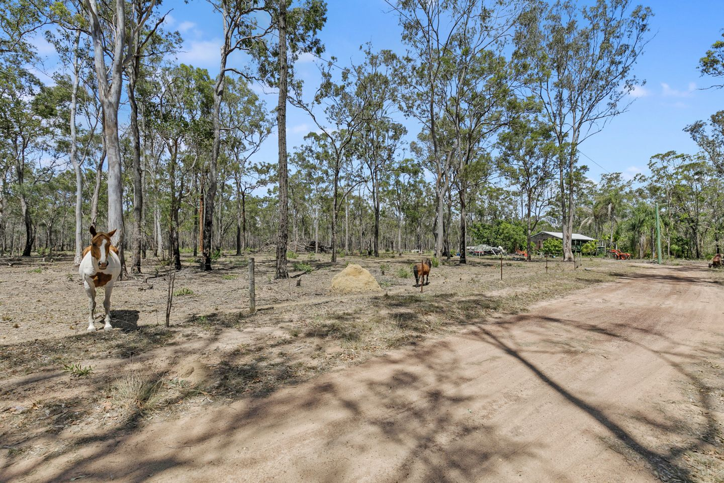 397 Old Toogoom Road, Beelbi Creek QLD 4659, Image 0
