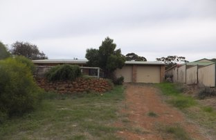 Picture of 20 Birdwood Street, Hopetoun WA 6348