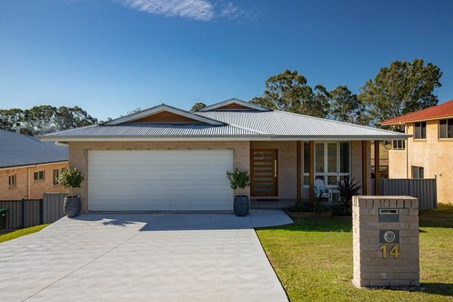 Picture of 14 Henderson Street, GLOUCESTER NSW 2422