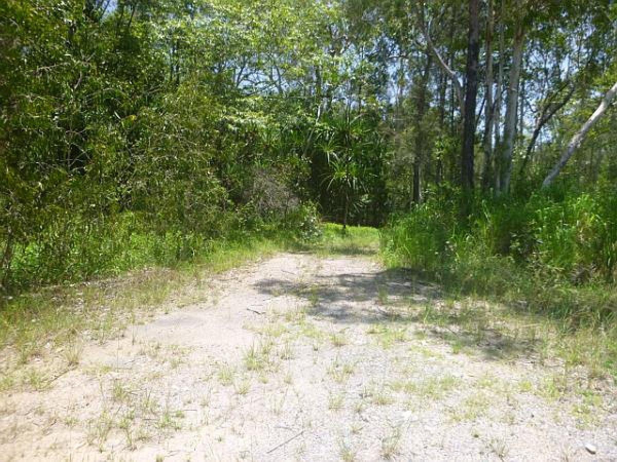 Lot 1 Bruce Highway, Rungoo QLD 4849, Image 1