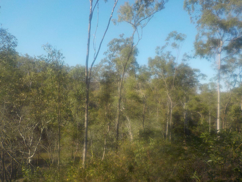 157 tesselaris trail, Gin Gin QLD 4671, Image 2