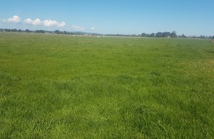 Picture of Lot 2 1380 Koo Wee Rup - Longwarry Road, Catani VIC 3981