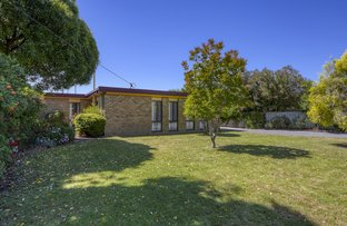Picture of 37 Kirsten Street, Shepparton VIC 3630