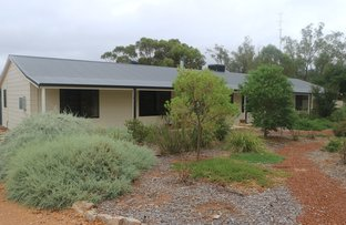 Picture of 69 Newcastle Street, York WA 6302