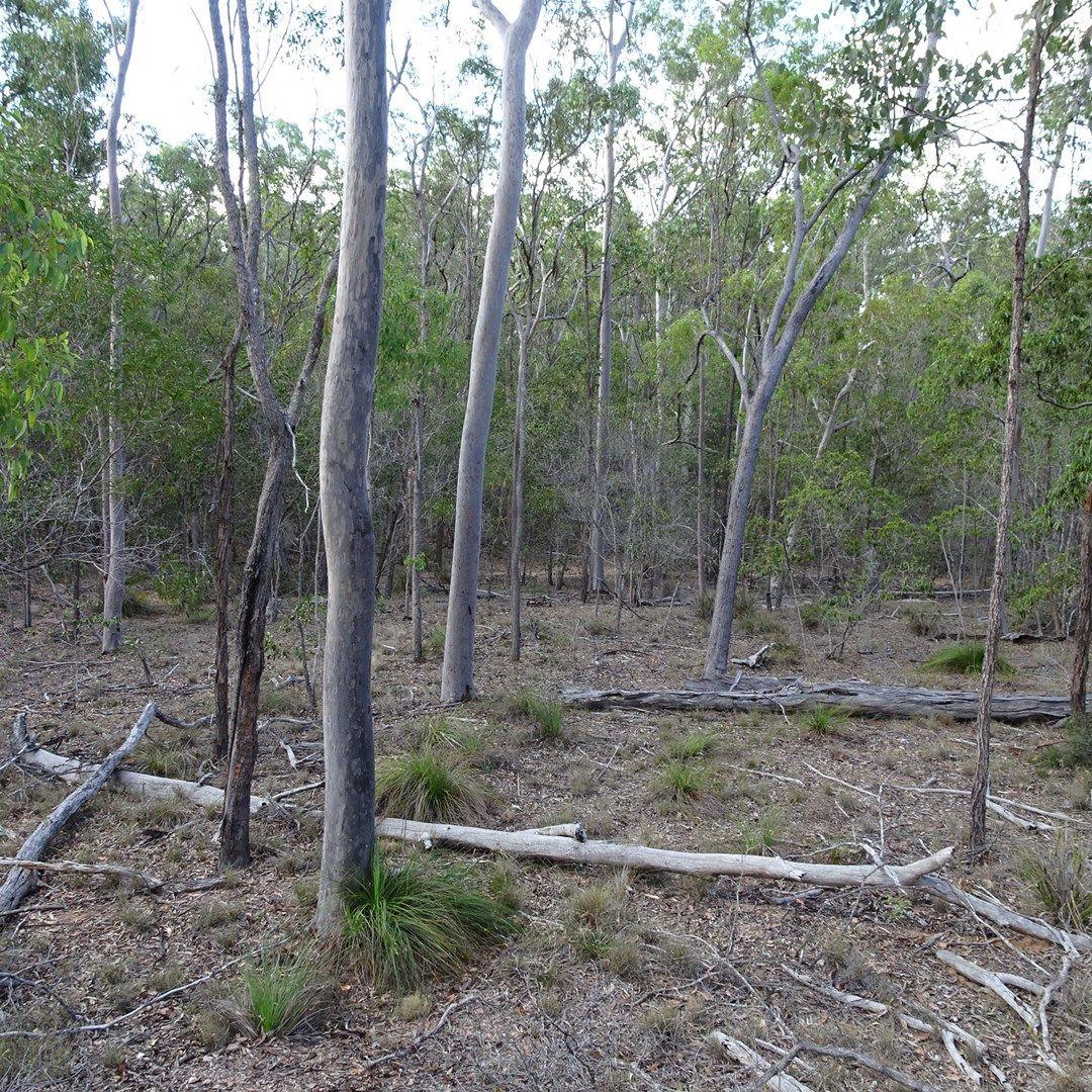 418 MARULE ROAD, Booyal QLD 4671, Image 0