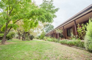 Picture of 178 Alloway Road, Boorowa NSW 2586