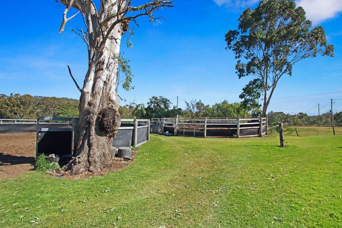 120 Euston Road, Glenvale QLD 4350, Image 2