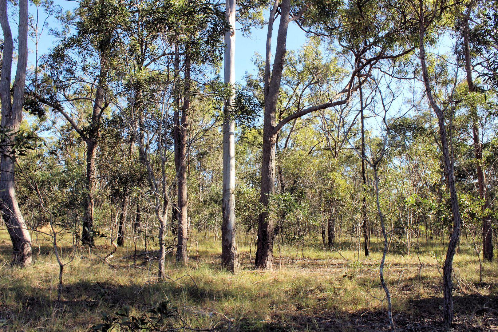 Lot 1 Bruce Highway, Maryborough QLD 4650, Image 2