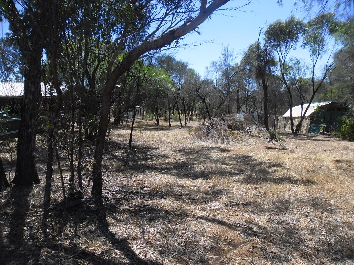 Lot 26 Northam-York Road, Muluckine WA 6401, Image 1
