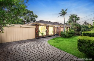 Picture of 81 Therese Avenue, Mount Waverley VIC 3149