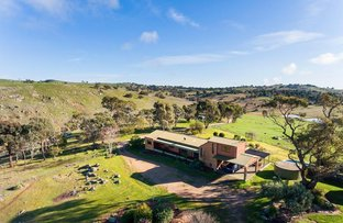 486 North Harcourt Road, Harcourt North VIC 3453