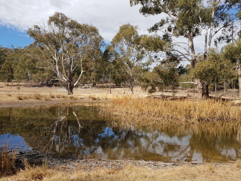 733 Hereford Hall Road, Braidwood NSW 2622, Image 0