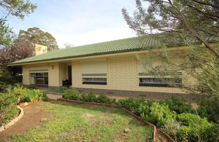 Picture of 100 Pyap Street, Renmark SA 5341