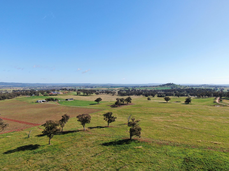 263 Springfield Lane, Mudgee NSW 2850, Image 0
