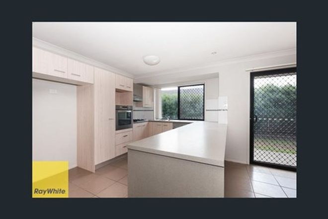 Picture of 20 Melicope Place, CARSELDINE QLD 4034