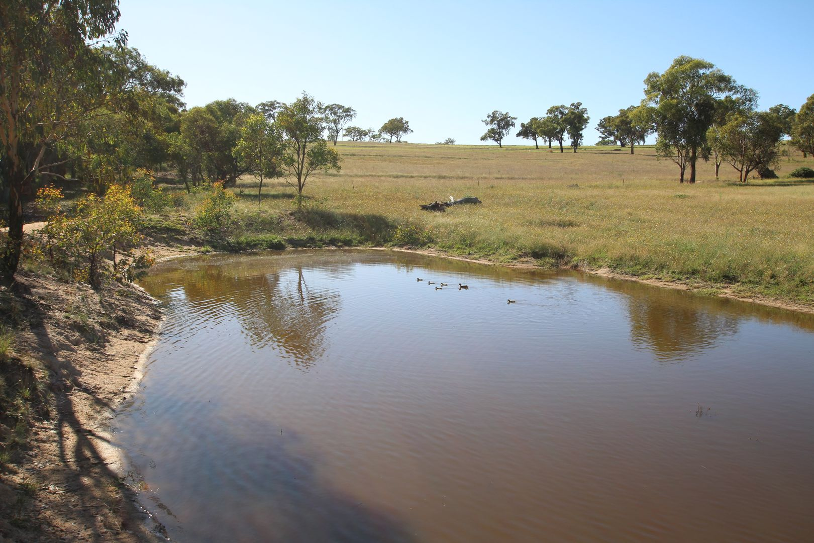 Lot 125, 1488 Mutton Falls Road, O'Connell NSW 2795, Image 0