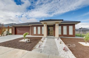 Picture of 53 Mandalay Circuit, Beveridge VIC 3753