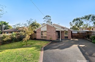 Picture of 17 Allied Drive, Carrum Downs VIC 3201