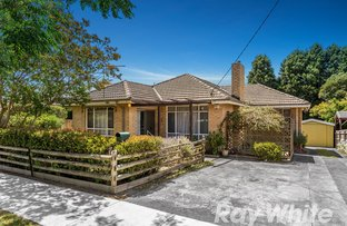 79 Husband Road, Forest Hill VIC 3131