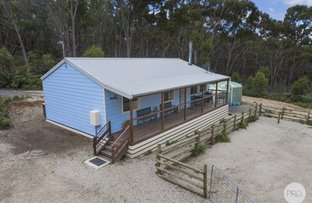 Picture of 50 McCallum Road, Scarsdale VIC 3351
