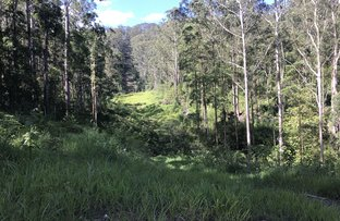 Picture of Lansdowne NSW 2430
