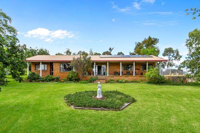 Picture of 144 Karanilla Road, QUIRINDI NSW 2343