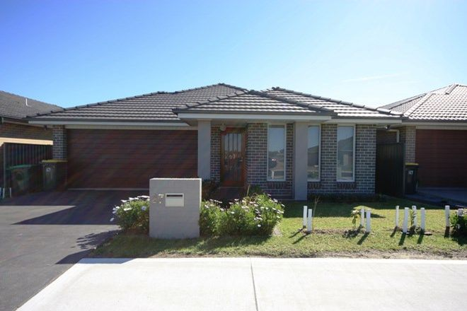 Picture of 27 Spitzer Street, GREGORY HILLS NSW 2557